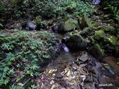 104/04/03 雙溪_蝙蝠山、苕谷瀑布、苕谷坑山:DSCN5041.jpg