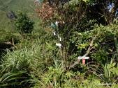 104/09/19 金瓜石_俯瞰稜、黃金池、黃金洞、煙囪稜、六坑索道:DSCN8010.jpg