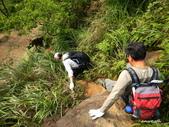 106/05/12 劍龍稜、鋸齒稜、555峰下俯瞰稜出山腰水管路:DSCN4382.JPG