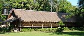 2009/12/22 沙巴亞庇 -長鼻猴生態螢河保護區:DSC_8808.jpg