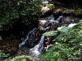 104/04/03 雙溪_蝙蝠山、苕谷瀑布、苕谷坑山:DSCN5005.jpg