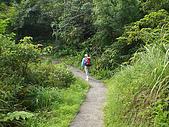 嶐嶐山,荖蘭山,嶐嶐古道:IMGP1537.JPG
