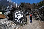 尼泊爾-聖母峰基地營(EBC)3/18-3/20:DSC_0208.JPG