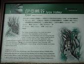 砂卡礑步道:DSC_3176