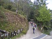 970308鵝公髻山:IMGP6609.JPG