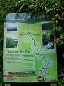 三角崙山聖母山莊步道:IMGP0635.jpg
