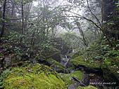 滿月圓檜谷線上多崖山:P1080920.jpg