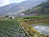 馬拉邦山:IMGP1834.jpg