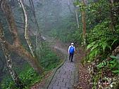 滿月圓檜谷線上多崖山:P1080823.jpg