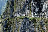 2010/01/10錐麓古道  斷崖駐在所—錐麓斷崖—巴達岡:DSC_9721.jpg