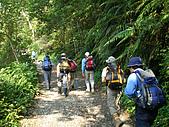 三角崙山聖母山莊步道:IMGP0608.JPG