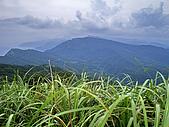 嶐嶐山,荖蘭山,嶐嶐古道:IMGP1558.jpg