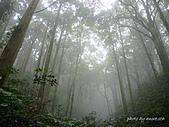 滿月圓檜谷線上多崖山:P1080826.jpg