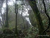 滿月圓檜谷線上多崖山:P1080928.jpg