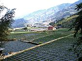 馬拉邦山:IMGP1837.jpg