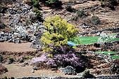 尼泊爾-聖母峰基地營(EBC)3/18-3/20:DSC_0227.jpg