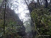 滿月圓檜谷線上多崖山:P1080929.jpg
