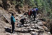 尼泊爾-聖母峰基地營(EBC)3/18-3/20:DSC_0233c.jpg