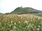 五分山:IMGP2654.jpg