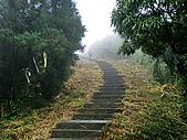 五分山:IMGP2577.jpg