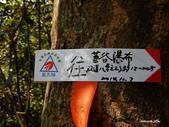 104/04/03 雙溪_蝙蝠山、苕谷瀑布、苕谷坑山:DSCN4923.jpg