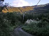 20100109 南插天山:IMGP4478.jpg