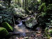 104/04/03 雙溪_蝙蝠山、苕谷瀑布、苕谷坑山:DSCN4998.jpg