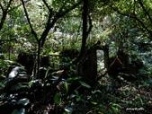 104/04/03 雙溪_蝙蝠山、苕谷瀑布、苕谷坑山:DSCN4989.jpg