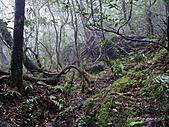 滿月圓檜谷線上多崖山:P1080936.jpg