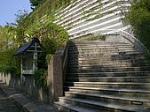 三角崙山聖母山莊步道:IMGP0615.JPG
