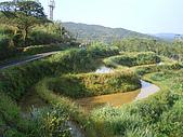 草嶺古道桃源谷:IMGP1865.JPG