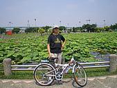 樂活板橋鐵馬行:IMGP1061.JPG