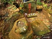 104/02/08 金瓜石_石尾古道、黃金神社、百二崁古道:DSCN3016.JPG