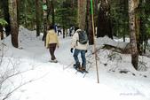 100/12/17 溫哥華CYPRESS雪地健行(Snowshoeing at Cypress):DSC_6924.jpg