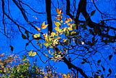 北得拉曼 內鳥嘴山:DSC_4808O.jpg