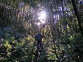 20100109 南插天山:IMGP4489.jpg