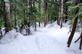 100/12/17 溫哥華CYPRESS雪地健行(Snowshoeing at Cypress):DSC_6926.jpg