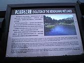 七星山夢幻湖:IMGP1321.jpg