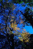 北得拉曼 內鳥嘴山:DSC_4812.jpg