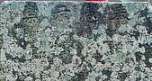 猴硐的金字碑、後凹古道:DSC_7702o.jpg