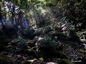 104/04/03 雙溪_蝙蝠山、苕谷瀑布、苕谷坑山:DSCN4951.jpg