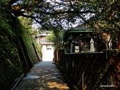 104/03/03 金瓜石_金東坑、金西坑古道:DSCN3588_3.jpg