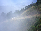 五分山:IMGP2603.jpg