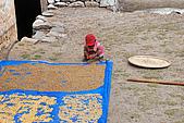 尼泊爾-聖母峰基地營(EBC)3/18-3/20:DSC_0265.jpg