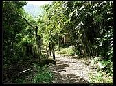 白雞三山:白雞山、雞罩山、鹿窟尖:P1000544.jpg