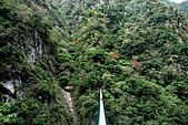 2010/01/10錐麓古道  斷崖駐在所—錐麓斷崖—巴達岡:DSC_9845.JPG