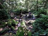104/04/03 雙溪_蝙蝠山、苕谷瀑布、苕谷坑山:DSCN5008.jpg
