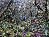 滿月圓檜谷線上多崖山:P1080950.jpg