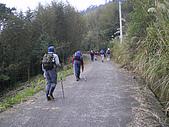 970308鵝公髻山:IMGP6611.JPG