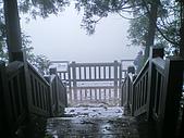 七星山夢幻湖:IMGP1324.jpg